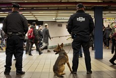 New York Subway Station Where Pipe Bomb Was Denotated